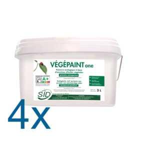 Vegepaint_one_COMPOSANTS4_tif.jpg